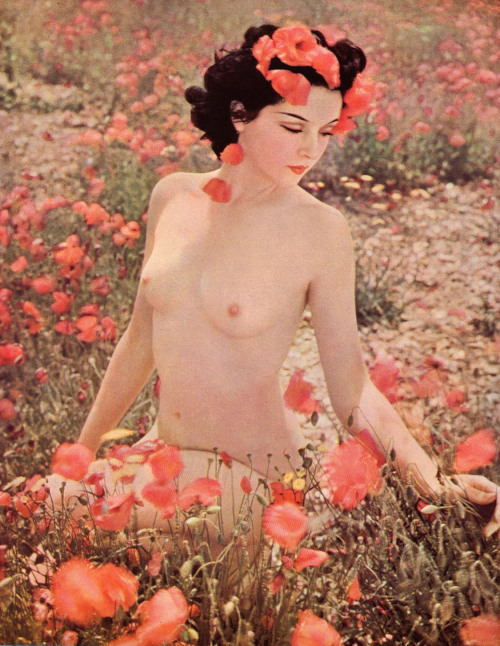 My passion for poppy flowers, vintage and lovely ladies - realized. retrogirly:  1938 Pin Up
