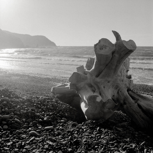 Makara Beach on Flickr.