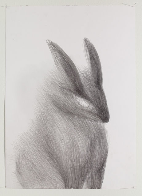 Miriam Cahn Ohne titel (bunny), 2009 Pencil on paper 11 81/100 × 16 27/50 in / 30 × 42 cm VIA