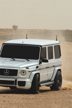 classyhustler:  G65 | source | more