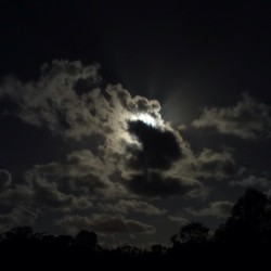 This month's full moOn creating a half lit wonderland of puffy clouds fast asleep.  (at The Mothershjip)