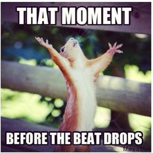 every fucking time! (repost from @steveangello) #thatmoment #when…
