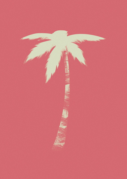 jackmrhughes:  I illustrated a palm tree.