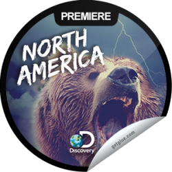 I just unlocked the North America: Born to Be Wild sticker on GetGlue                      4466 others have also unlocked the North America: Born to Be Wild sticker on GetGlue.com                  Wolves, whales, lions and bears are observed in the opener of this series exploring North American wilderness. Share this one proudly. It's from our friends at Discovery.
