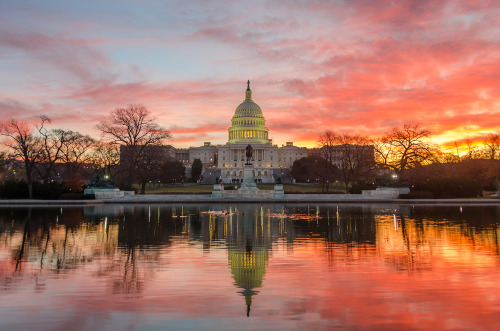 Capitol Building at sunset by Etihad flights to Washington DC