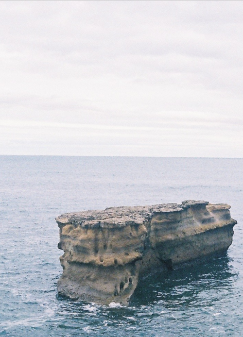 trulyperf:  (by Hayden Lane)
