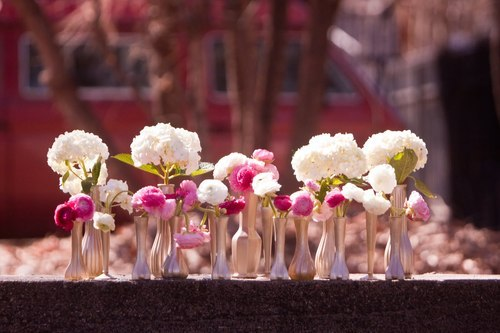 Hydrangeas and Ranunculus Arrangement in Gold Spray Painted Vases
