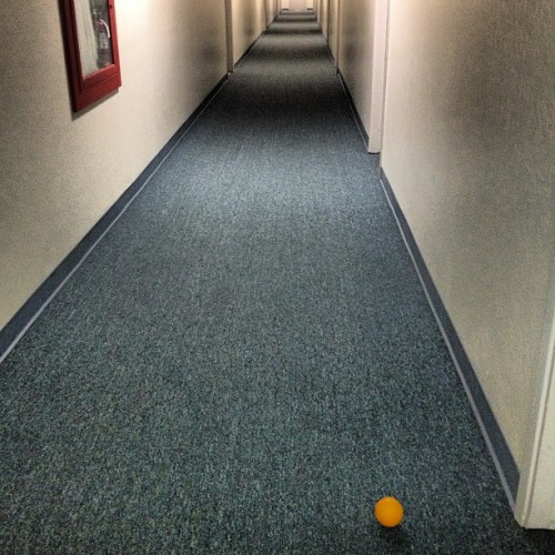 The hallway: a lonely orange's natural enemy…