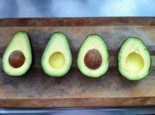 silver-y:  coconut-kiddo:  berry-gem:  Holey guacamole … avocados :3  q'd training/sleep/school   Family