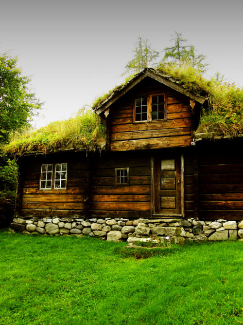 Sunmore viking house (by joegazso)