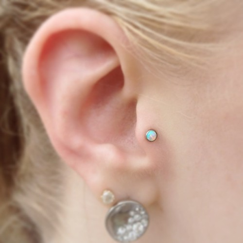 Fresh tragus with a white opal cabochon.  (at Lucky Rabbit)
