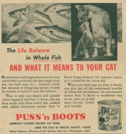 "heck-yeah-old-tech:  ""Feesh.  We eats dem, son.""  1953"