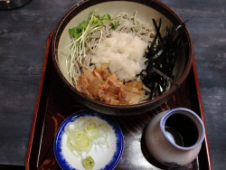 長寿庵 おろしそば 大盛 on Flickr.Oroshi soba. Perfect lunch.