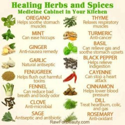 rawlivingfoods:  Nature itself is the best physician. Do you use healing herbs and spices as medicine?