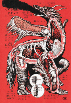 Japanese Monster Anatomy via Flyer Goodness