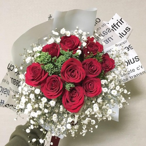 I love roses a aesthetic mine do not remove caption