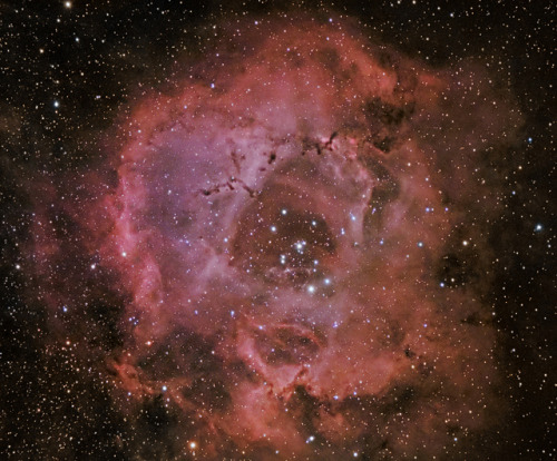 Rosette Nebula HaRGB Collaboration 15 January 2013 by BudgetAstro on Flickr.