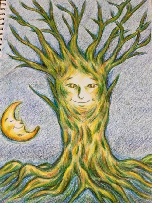 夜の木 Night tree