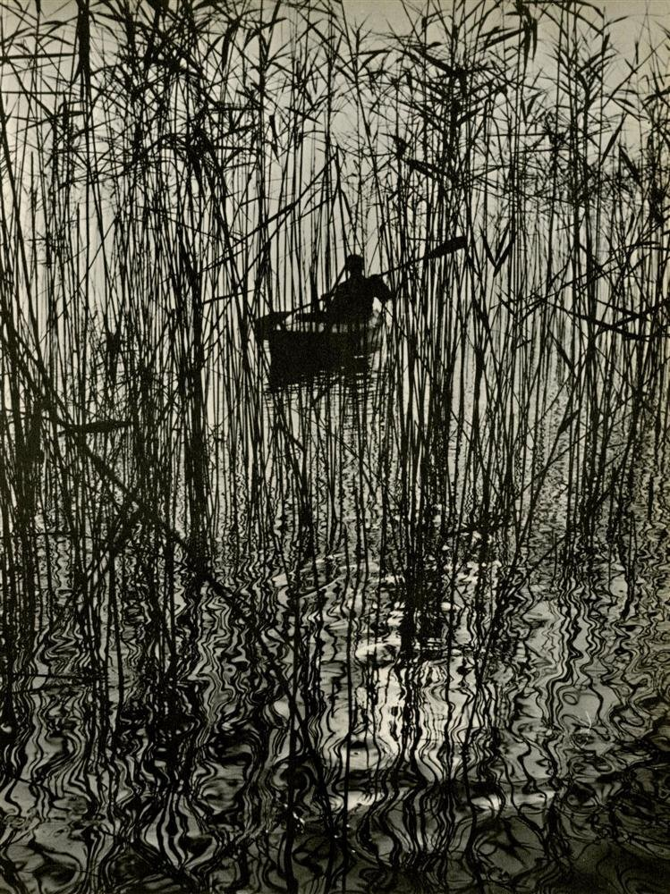 Along the Bondensee at Mainau, 1961Ruth Hallensleben