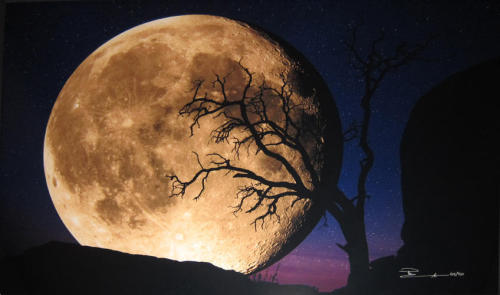 "indigoexorcist:  ""Bella Luna"" taken by photographer Peter Lik"