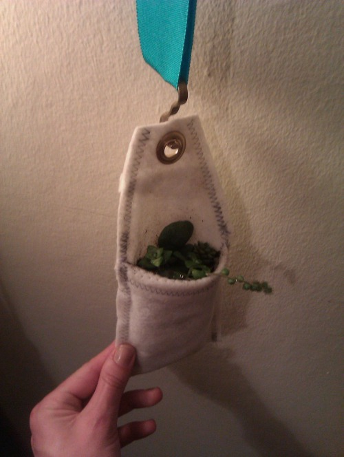 Tiny Plant Pocket