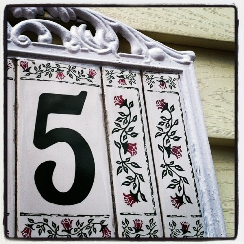 Day 544: Floral five #typegeek365 #photo365 #numbers #tumblr