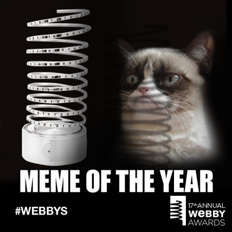 realgrumpycat:  Grumpy Cat has won the Buzzfeed Meme of the Year award at The Webbys!