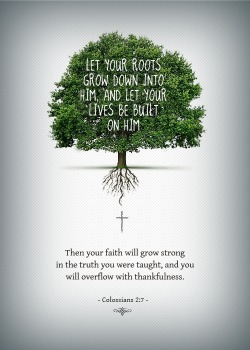 spiritualinspiration:  God is constantly trying to plant new seeds of victory on the inside of you. He's trying to increase you. He's trying to enlarge your vision. He wants to take you to new levels of victory. But before you see a harvest, the seed has to take root. You have to conceive it before you are going to receive it. In other words, before you're ever going to be successful, you've got to see yourself successful. Before you're ever going to have your dreams come to pass, you've got to look out through your eyes of faith and see them coming to pass. That's how you allow the seed to take root. Today, I encourage you to examine your thought life. What are you allowing to take root? Are God's seeds of victory and life growing in your heart and mind, or are you nurturing seeds of defeat and despair? The good news is that you can change your thoughts right now, this very moment. Begin to dwell on God's promises and His goodness. Let His good seeds take root in your mind and heart. It won't be long before you'll see that harvest of blessing come forth in every area of your life!