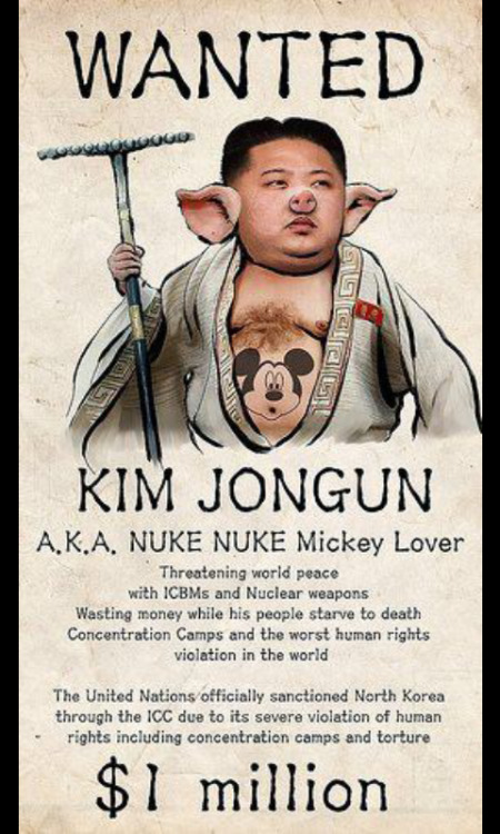 How about getting this printed up in Korean, loaded into drones and then dropped poverty North Korea by the million.