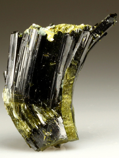 themineralogist:  Epidote specimen from Austria. The Epidote displays a curved formation due to tectonic movement during the growth stage of the crystal.
