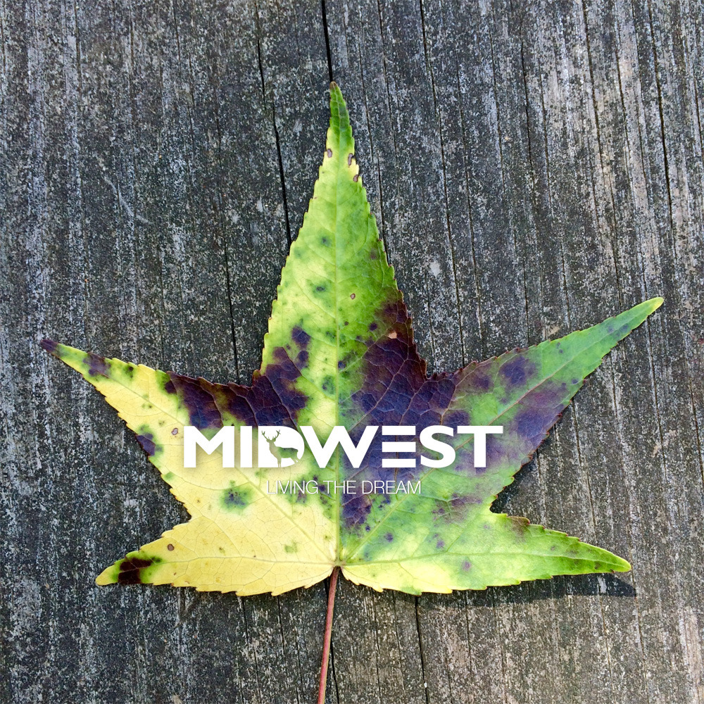 LIVING THE DREAM - midwestshades.com
