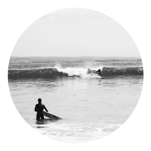 surfs-on-oceanavenue:  queued