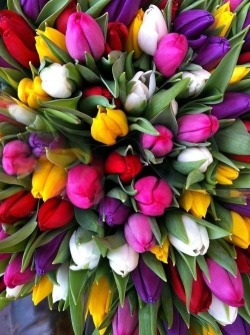 (via Pinterest) A floral rainbow.