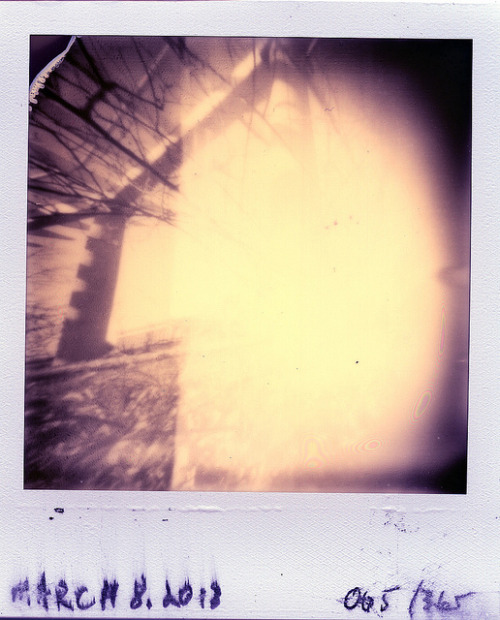 Pinhole: March 8, 2013 (005/365) on Flickr.Centennial Park, Nashville Ammo Can, ~f/175, tilted film plane, PX 600 Silver Shade UV+, about 2 seconds