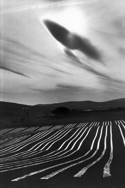 Melon plantation, Montjustin, France 1976 by Martine Franck