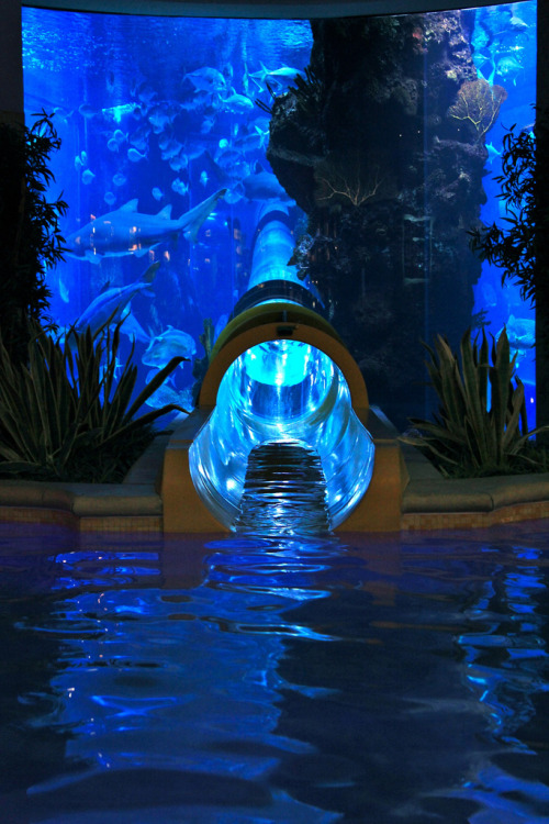 Water Slide at the Golden Nugget by (heroicnich)