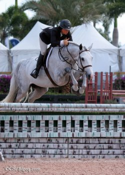 equestriansport:  wonderrider:  WEF 2013 Photo Credit: Big Eq  thumbs up