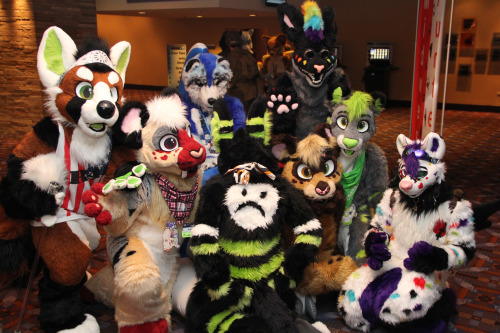 what a mess of cute fluffies!