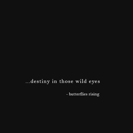 …destiny in those wild eyes- butterflies rising #Butterflies Rising#butterfliesrising