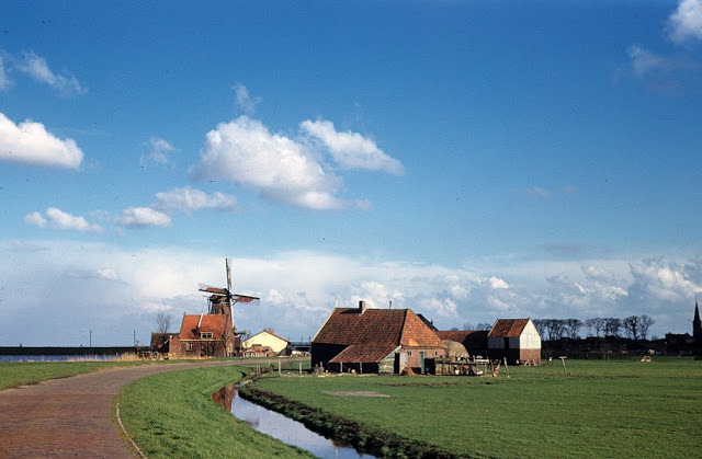 next week! (via Color Photos of Netherlands in the Summer)
