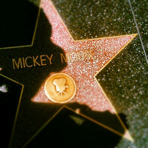 #Hollywood  #holiday #photography #stars #fame #mickeymouse #mouse #la