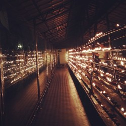 mamzel:  oil burner prayers (at Sri Dalada Maligawa / Temple Of The Sacred Tooth Relic (ශ්‍රී දළදා මාළිගාව))
