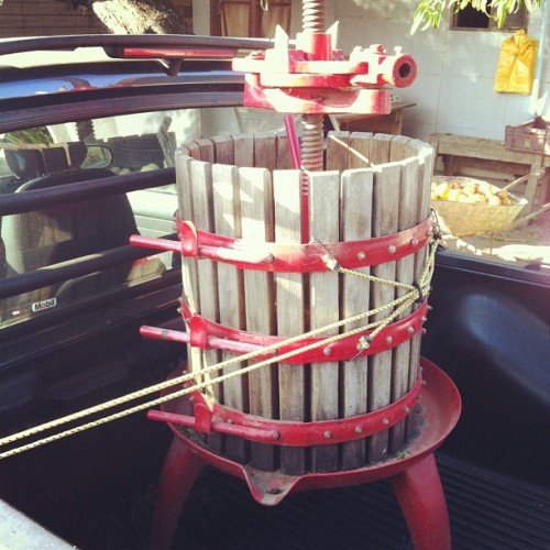 winewwords:  Mini Basket Press