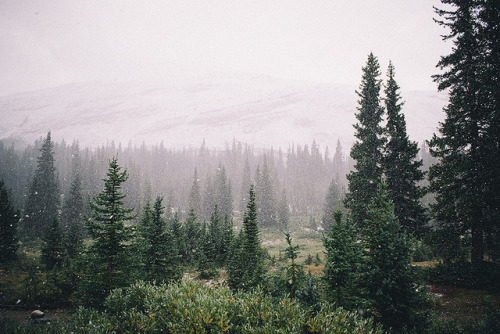 aphelia:  canada #30 by níls on Flickr.