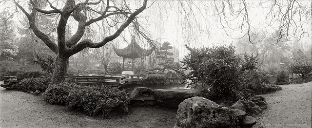 pastoral garden on Flickr.Via Flickr: The fog sure did wonders for Sun Yat Sen Gardens over the weekend, much more pastoral with all the high rises in the background safely obscured from view.