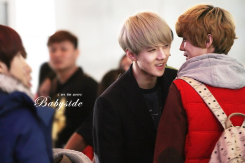 [© Babyside] Do not edit. Do not remove logo.