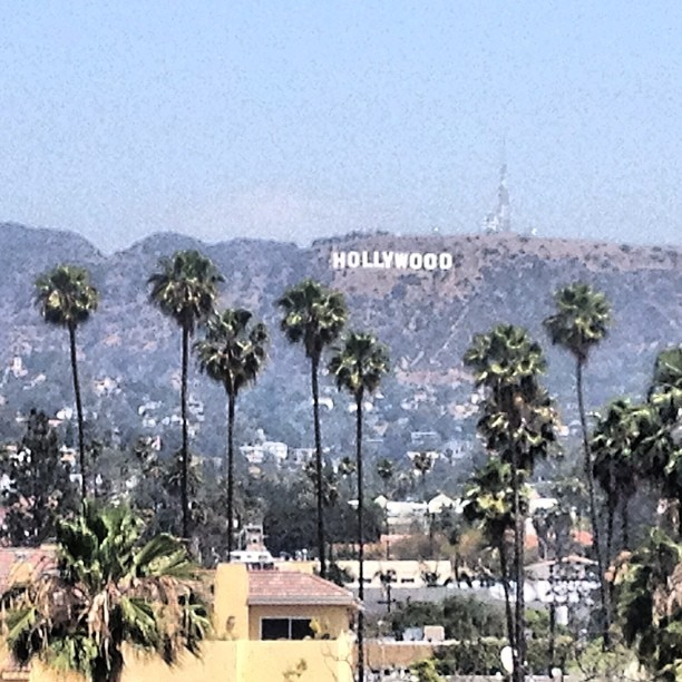Hollywood n shit