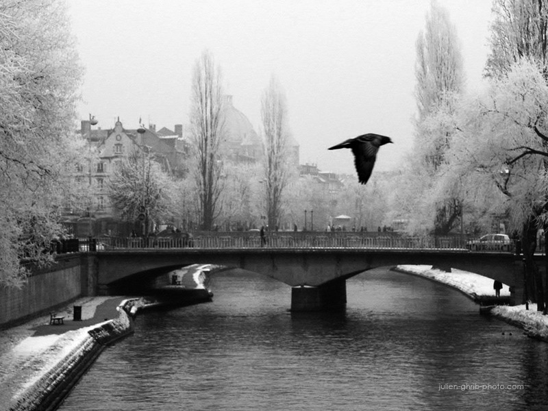 julienghrib:  Strasbourg © 2013 Julien Ghrib Photographies