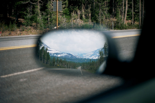cervid:  Sisters in the rearview (by andybokanev)