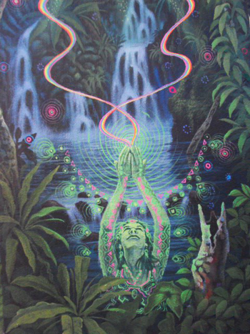 psycho-hierophants:  sacred energy of the jungle … BY JUAN CARLOS TAMINCHI
